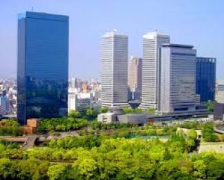 Japonia  15 zile